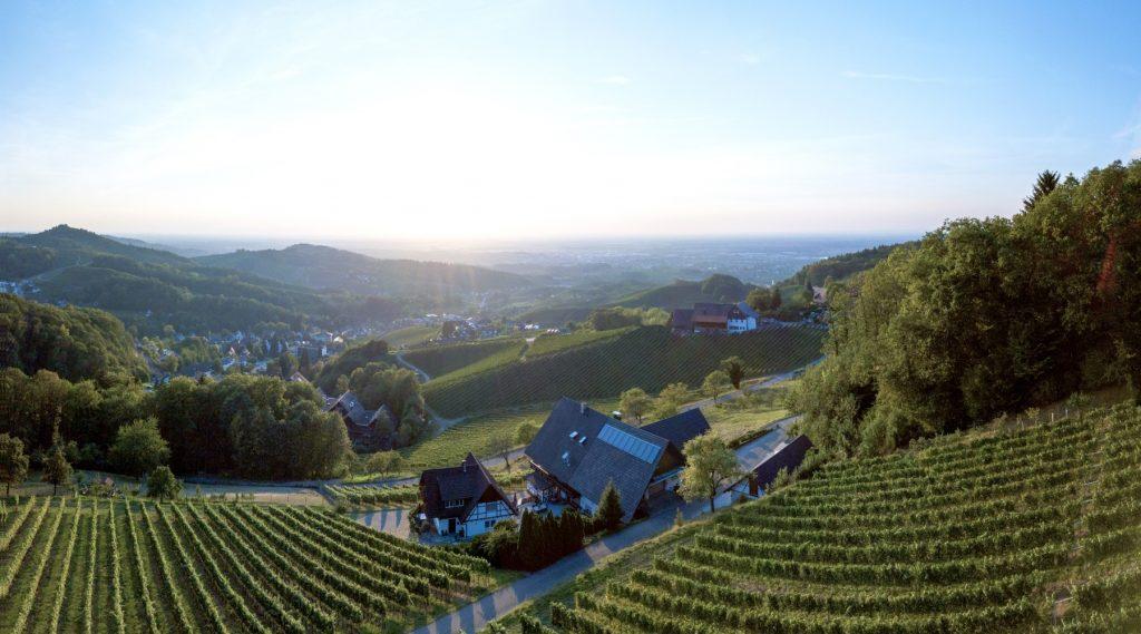 Aussicht ins Rheinland